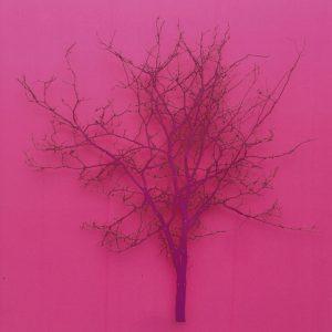 Sherbet Tree VI paper silk pins 58x58cm Gall P £1800 2