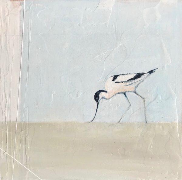 Jane Skingley, Avocet, oil on board, 30x30cm