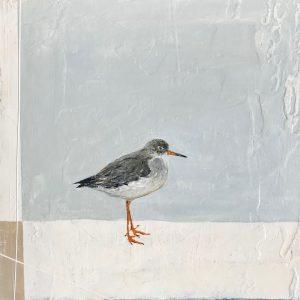 Jane Skingley, Red Shank, oil on board, 30x30cm