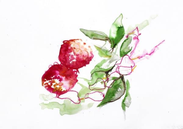 Strawberry Tree (medronheiro)