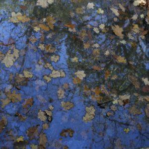 14 Sky Blue Puddle