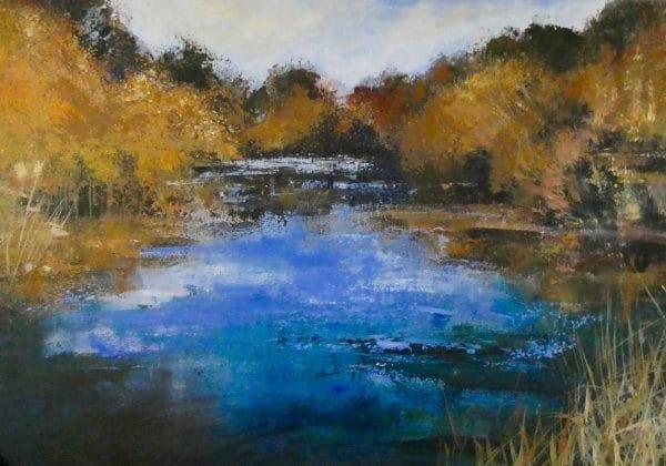 3 Eyeworth pond New Forest
